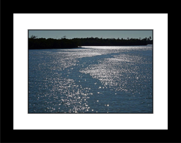 Sparkling Waters black frame